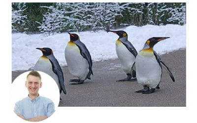 How will Google Penguin 4.0 Affect Your Site